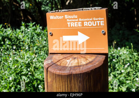 Johannesburg South Africa African Roodepoort Walter Sisulu National Botanical Garden Witwatersrand sign tree route - Stock Photo