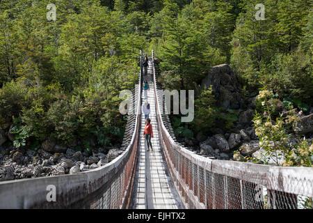 Tourists crossing a suspension bridge. Queulat National Park. Aysén Region. Chile - Stock Photo