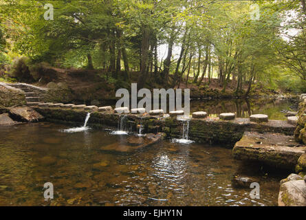 One of 16 bridges across the Shimna River in Tollymore Forest Park, Northern Ireland - Stock Photo