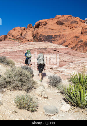 Rock climbers hike with gear at Red Rock Canyon National Conservation Area, about 20 miles from Las Vegas; climbers - Stock Photo