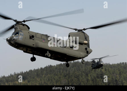 CH-47 Chinook helicopters from the 12th Combat Aviation Battalion drop into a landing zone too pickup U.S. Army - Stock Photo