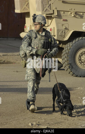 A U.S. Army Soldier and his military working dog conduct a cordon and search for improvised explosive devices and - Stock Photo