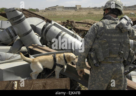 A U.S. Army Soldier and his working dog Lucky conduct a search for explosive devices in an area covered in disposed - Stock Photo