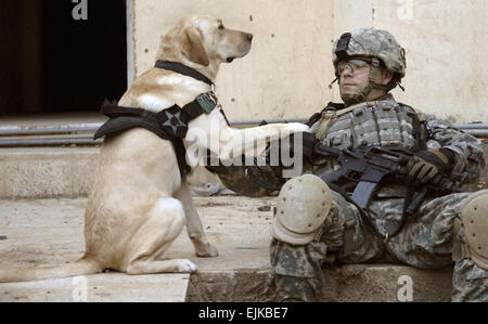 U.S. Army Staff Sgt. Kevin Reese and his military working dog Grek wait at a safe house before conducting an assault - Stock Photo