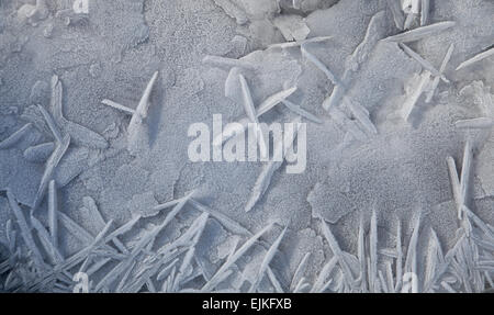 frostwork - Stock Photo
