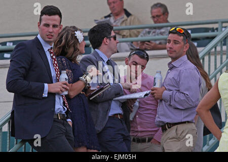 Hallandale Beach, Florida, USA. 28th Mar, 2015. March 28, 2015: Scenes from Gulfstream Park on Florida Derby Day - Stock Photo