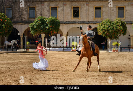 The equestrian show in the Royal stables of Cordoba - Stock Photo