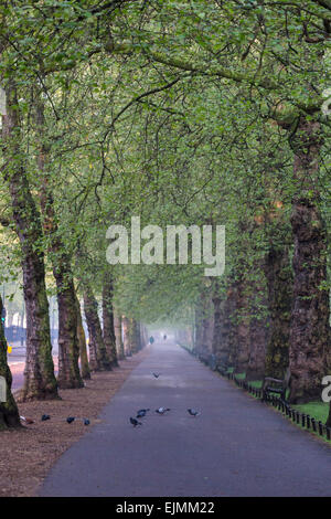 Bird Cage Walk, St. James's Park, London - Stock Photo