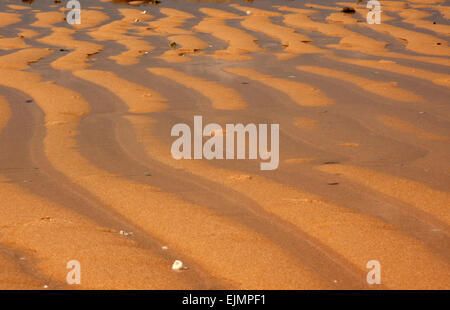 Malaysia.Tioman island.Summer morning on the beach after outflow the ocean.Patterns on wet sands.Sand has a yellow - Stock Photo
