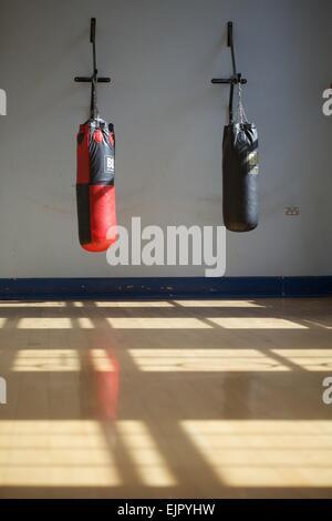 shot of punching bags hanging in gym - Stock Photo