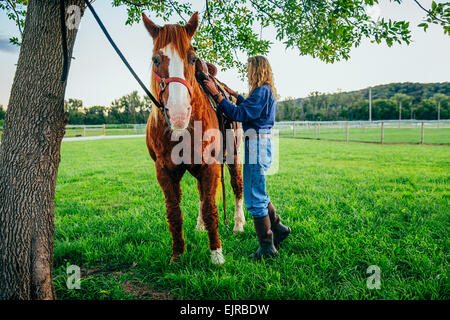 Caucasian woman brushing hair of horse on farm - Stock Photo