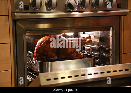 Thanksgiving turkey roasting in the oven - Stock Photo