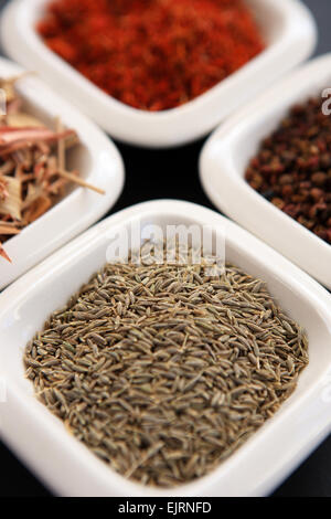 Cumin seeds in a small white dish with, going clockwise from the cumin seeds, lemongrass, saffron and Szechuan peppercorns - Stock Photo
