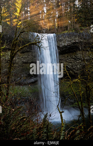 OR02066-00...OREGON - Early morning sunlight streaming over the top of South Falls in Silver Falls State Park. - Stock Photo