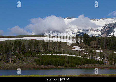 A May morning in Yellowstone National Park, Wyoming, glows with blue skies as the the sun burns off early mists. - Stock Photo