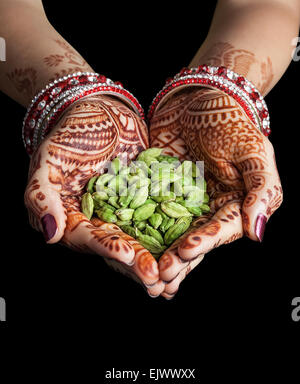 Woman hands with henna holding green cardamom spices isolated on black background with clipping path - Stock Photo