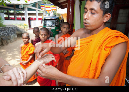 BUDDHIST MONKS AT THE MONASTRY NEAR GALLE - Stock Photo