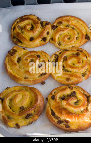 Pain Au Raisin cake pastry pastries farmers market - Stock Photo