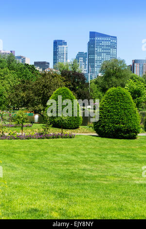 ... Boston Common Park Gardens And Skyline In Massachusetts USA   Stock  Photo