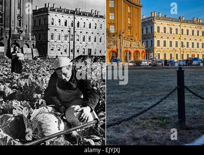 Leningrad, USSR. Farming vegetables in a square near St Isaac's Cathedral during the Siege of Leningrad. Mikhail - Stock Photo