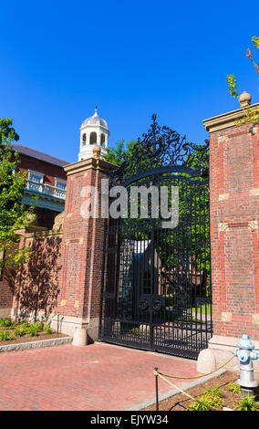 Harvard University in Cambridge Massachusetts USA - Stock Photo