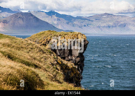 Face like profile on the volcanic lava rock face cliffs in Arnarstapi on the Snaefellsnes Peninsula in Iceland. - Stock Photo