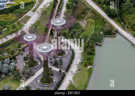 Garden By The Bay August 2014 marina bay park tree structures in singapore stock photo, royalty