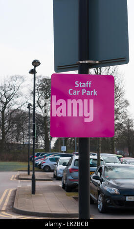 Staff parking sign mounted on a pole with cars in background conceptual image - Stock Photo