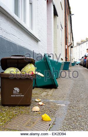 Food Recycling, Blandford Forum, Dorset, England UK - Stock Photo