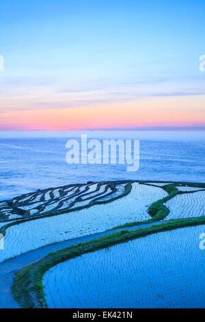 Rice terraces at twilight, Shiroyone senmaida, Ishikawa,Japan - Stock Photo