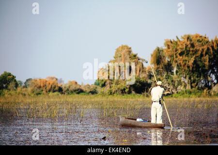 African man on wooden boat (mokoro) in Okavango Delta - Stock Photo