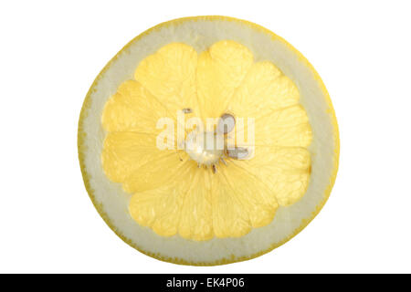 Tropical fruits, exotic fruits, grapefruit, Citrus maxima - Stock Photo