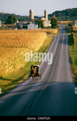Rural country road with Amish family riding in horse drawn buggy - Stock Photo