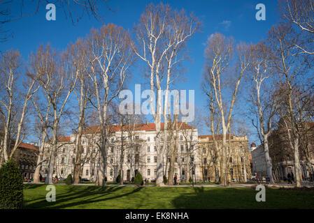 Plane trees at Zrinjevac park, Josip Juraj Strossmayer square, Zagreb, Croatia - Stock Photo