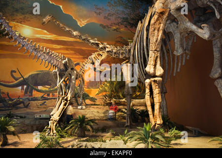 Visitors stroll beneath giant dinosaur skeletons at the New Mexico Museum of Natural History & Science in Albuquerque. - Stock Photo