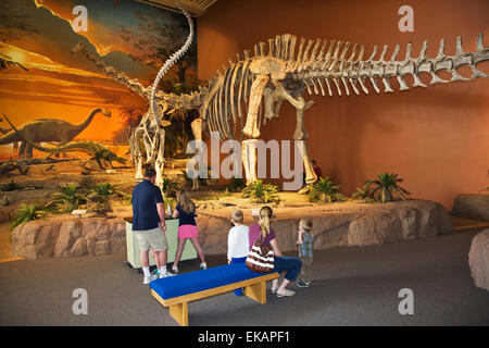 Visitors study the giant skeletons of dinosaurs at the New Mexico Museum of Natural History & Science in Albuquerque. - Stock Photo