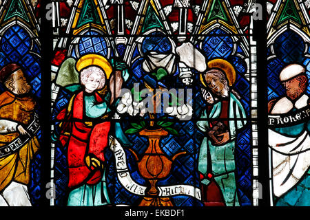 Stained glass window depicting Announcement made to Mary, Our Lady of Strasbourg Cathedral, Strasbourg, Bas-Rhin, - Stock Photo