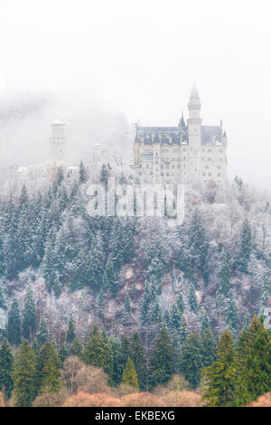 Neuschwanstein Castle in winter, Fussen, Bavaria, Germany, Europe - Stock Photo
