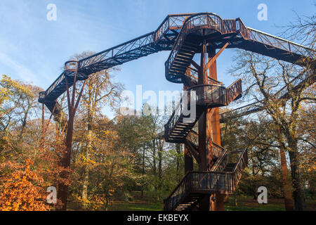 The Treetop Walkway in autumn at Kew Gardens, UNESCO World Heritage Site, Greater London, England, United Kingdom, - Stock Photo