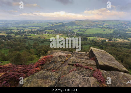 Heather on Curbar Edge at dawn, with view towards Curbar and Calver, late summer, Peak District, Derbyshire, England, - Stock Photo