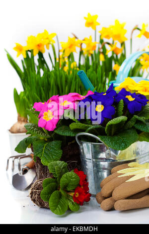 Spring flowers and garden tools - Stock Photo