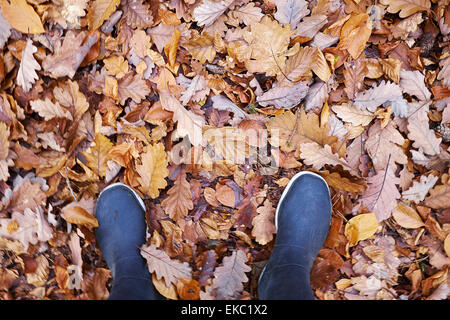 High angle view of woman in rubber boots stranding in autumn leaves - Stock Photo