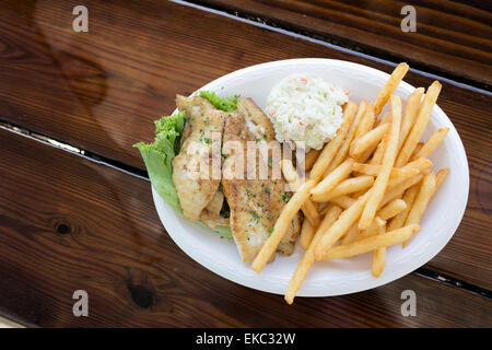 Northern red snapper (Lutjanus campechanus) dish - Stock Photo