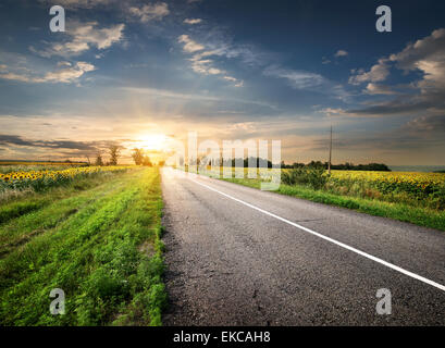 Asphalted highway - Stock Photo