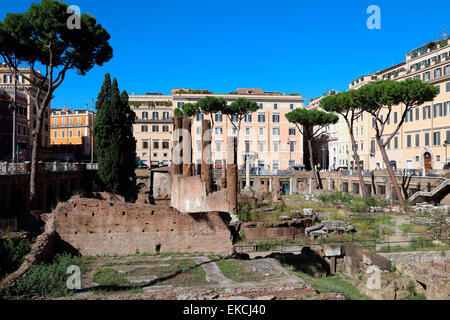 Italy Rome Largo di Torre Argentina - Stock Photo