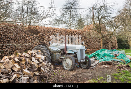 Broken down and dilapidated vintage, grey, old-fashioned traditional design tractor with pile of cut logs piled - Stock Photo