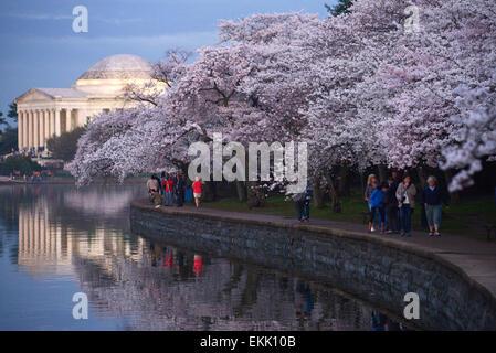 Washington, DC, USA. 10th Apr, 2015. People walk alongside the cherry trees near the Jefferson Memorial in Washington, - Stock Photo