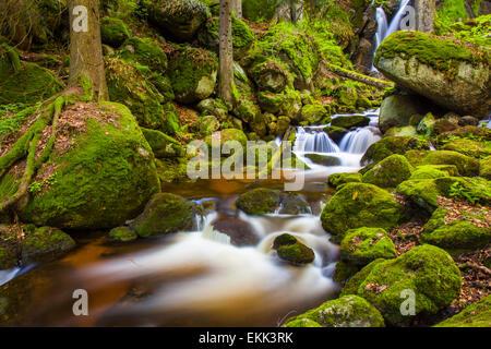 River with small waterfalls in a gorge, Ysperklamm, Lower Austria, Austria - Stock Photo