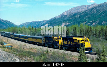 Two blue-and-yellow locomotives of the state-operated Alaska Railroad pull baggage and passenger observation cars - Stock Photo