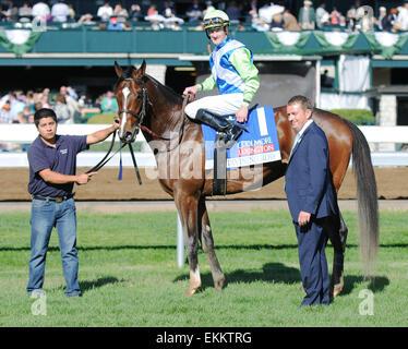 Lexington, KY, USA. 11th Apr, 2015. Divining Rod and jockey Julien Leparoux win the Coolmore Lexington at Keeneland - Stock Photo